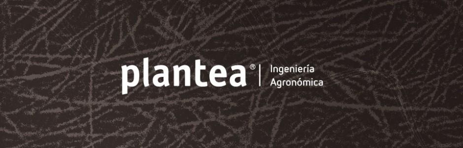 Plantea: Servicios generales de Ingeniería Agronómica